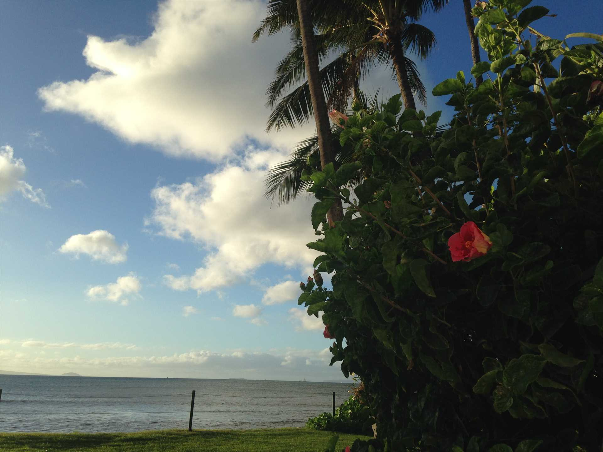 Enjoy epic sunsets over Maalaea Bay