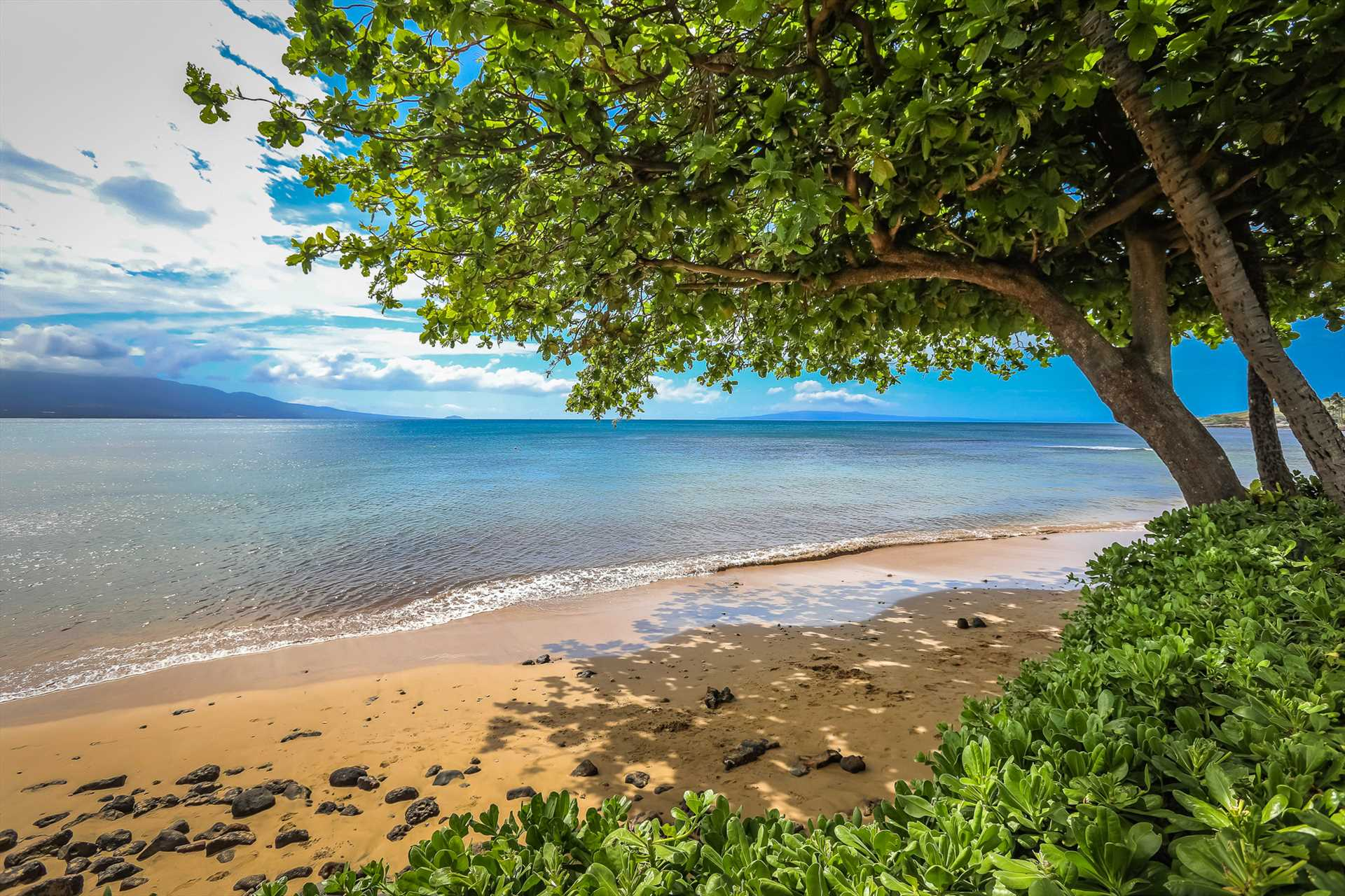 Walk miles along the shore of Maalaea Bay down to Maalaea Ha
