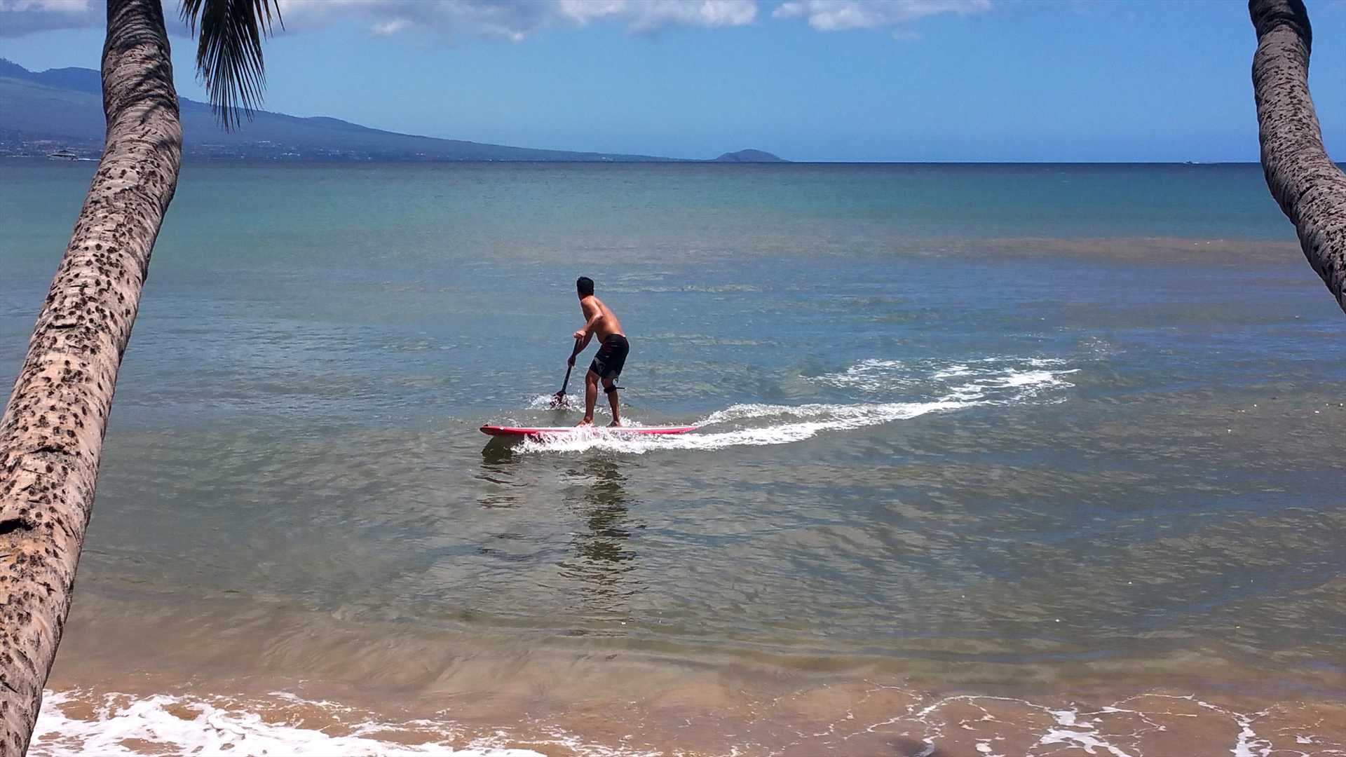 Walk and play on Maalaea Bay. Amazing snorkeling. Swim with