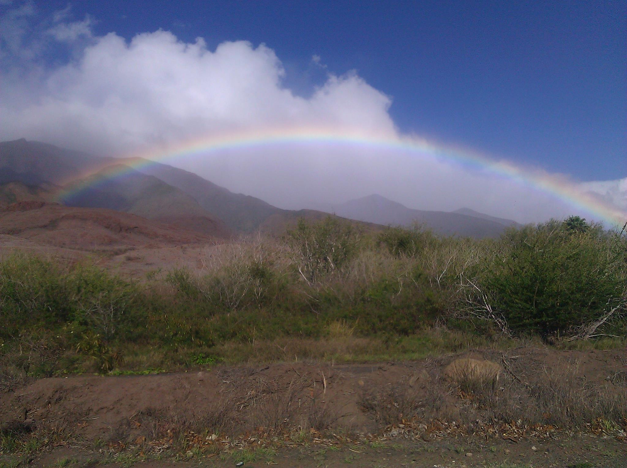 rainbow2_r