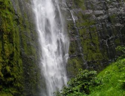 5 Waterfalls To Experience On Maui