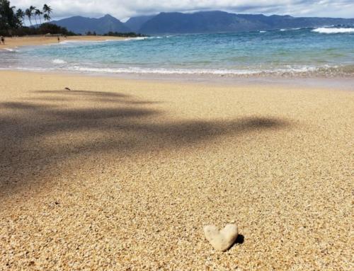 The Hawaiian Healing Secret