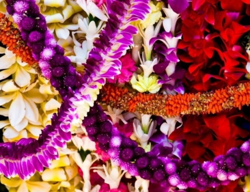 Lei Day and the Meaning of the Lei
